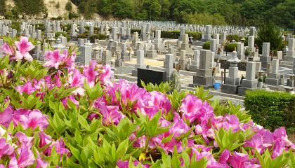 枚方市の自然に溢れた公園墓地