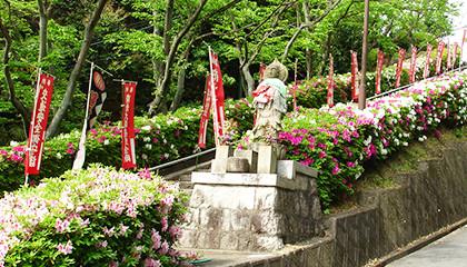 心なごむ清浄の地、大阪枚方霊苑